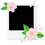 Polaroid fhoto frame with pink flowers Stock Photos