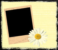 Polaroid frame. With cute flower Stock Photo