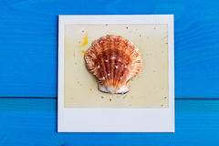 Polaroid Frame and Seashell. On Blue Wooden Background with Copy Space Stock Photography