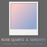 Polaroid frame with trend color 2016. Rose quartz. And serenity vector design Royalty Free Stock Photos