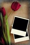 Polaroid frame and tulips. On vintage background Royalty Free Stock Photo
