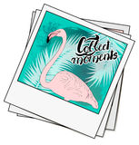 Polaroid photo with flamingo and watercolor palms. Lettering col. Lect moments. Vintage, retro style, good memories concept. Vector Royalty Free Stock Photography