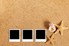 Polaroid photo frames row on summer beach background with starfish and copy space Stock Image
