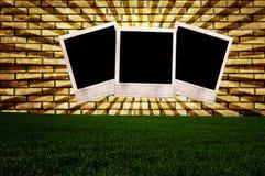 Polaroid photo wal and grass. Wall as background with polaroid photos Stock Photos
