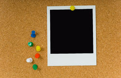 Polaroid picture on Corkboard Stock Image