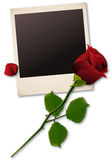 Polaroid picture with red rose Royalty Free Stock Photography