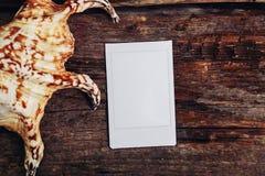 Polaroid with sea shell Stock Photo