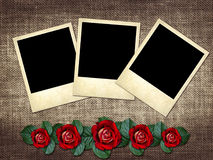 Polaroid-style photo on a linen background  with red rose Royalty Free Stock Image
