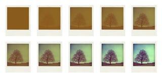 Polaroidcamera Stock Fotografie