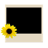 Polaroidcamera met zonnebloem Stock Fotografie