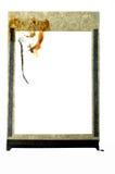 Polaroidfeld Lizenzfreies Stockfoto