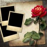 Polaroidkamera-stil foto på en linnebakgrund med röda rosor Royaltyfri Fotografi