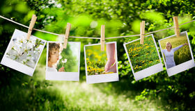 Polaroids. Prints with natural concepts pictures Royalty Free Stock Images