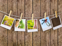 Polaroids. Prints with natural concepts pictures Royalty Free Stock Photo