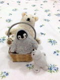 Polart djur Royaltyfri Fotografi