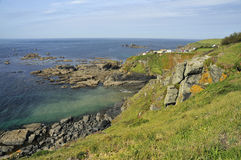 Polbream Cove, Lizard Point Royalty Free Stock Photos