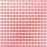 Polca rosada Imagenes de archivo