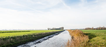 Polder landscape in autumn Royalty Free Stock Images
