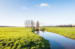 Polder landscape in autumnal sunlight Royalty Free Stock Images