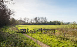 Polder landscape with fence and gates Stock Photography