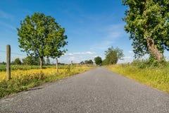 Polderväg i Nederländerna Arkivbilder