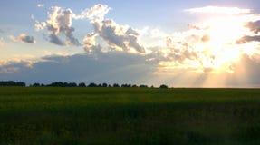 Pole łąkowa trawa przy zmierzchem słońce łama swój promienie przez chmur Obrazek wziąć na letnim dniu fotografia stock