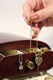 pole 2 biżuterii Zdjęcie Stock