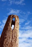 Pole Stock Photography