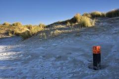 Pole auf einem gefrorenen Strand Stockfotografie