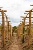 Pole bamboo frame on clay Stock Photos
