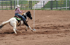 Pole Bending. At spring rodeo. Young woman on paint horse Stock Photos