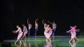 Pole bitwy kwiatów grupy Żółty Rzeczny taniec Fotografia Stock