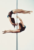Pole dance team Stock Image