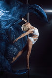 Pole dance Royalty Free Stock Photography