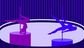 Pole dancers in pole dance studio flat style.Vector illustration Stock Photos