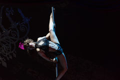 Pole dancing girl-Acrobatic showBaixi Dream Night Stock Photography