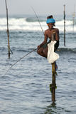 Pole fishermen at work in the early morning at Koggala on the south coast of Sri Lanka. Stock Images
