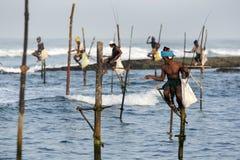 Pole fiskare på arbete i ottan på Koggala på sydkusten av Sri Lanka Royaltyfria Foton