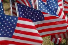 pole flagę zdjęcia royalty free