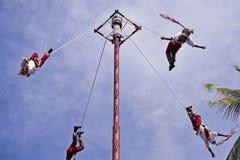 Pole flyg eller dans av reklambladen Arkivbild