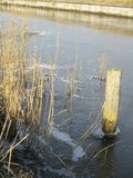 Pole in the frozen water Royalty Free Stock Images