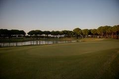 Pole golfowe na zmierzchu Zdjęcia Stock
