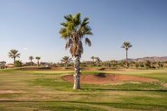 Pole golfowe w Marrakesh Obrazy Stock