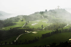 Pole golfowe w mgle Zdjęcia Royalty Free