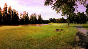 Pole golfowe w wieczór Obraz Stock
