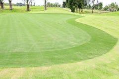 Pole golfowe zielona trawa Zdjęcie Stock