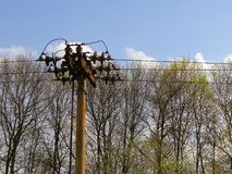 The pole with high voltage wires against the sky and trees Royalty Free Stock Photos