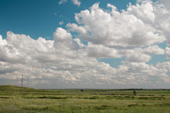 Pole i chmury, Kazachstan republika Zdjęcia Royalty Free