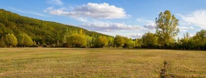 Pole i drewno panorama zdjęcie stock