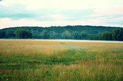 Pole i mgła Zdjęcie Royalty Free